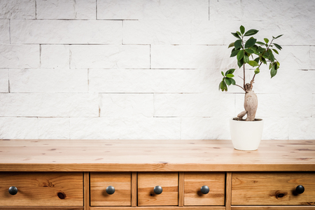old wooden shelf, flower and white wall