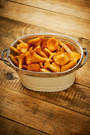 delicious yellow and fresh chanterelle mushrooms in a bowl on an old wooden table