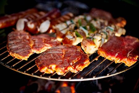 Different types of juicy meats on hot coals on grill in garden Stock Photo