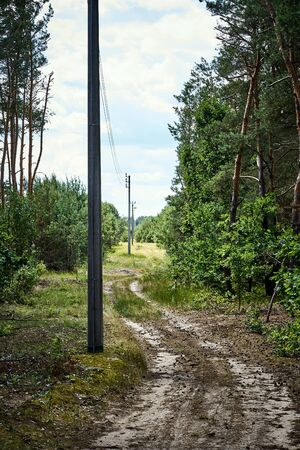 high voltage pylons over a gravel road in the forest