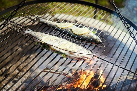 delicious trout with spices roast on a grill over a fire Standard-Bild - 149153185