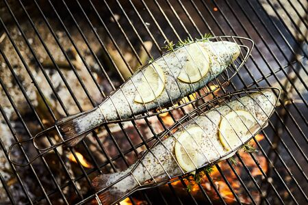 delicious trout with spices roast on a grill over a fire Standard-Bild - 149153045
