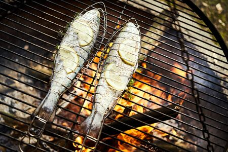 delicious trout with spices roast on a grill over a fire