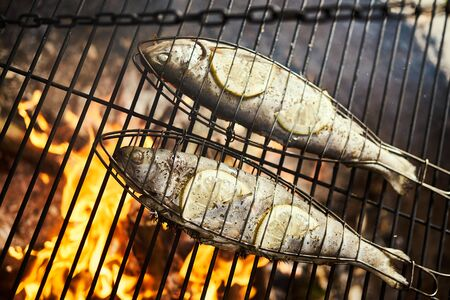 delicious trout with spices roast on a grill over a fire Standard-Bild - 149154329