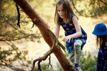 two girls in summer dresses are climbing a tree in the forest Standard-Bild - 149154762