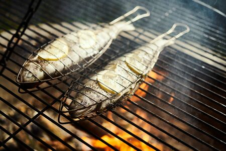 delicious trout with spices roast on a grill over a fire Standard-Bild - 149155427