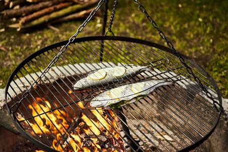 delicious trout with spices roast on a grill over a fire Standard-Bild - 149156244