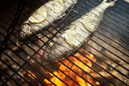 delicious trout with spices roast on a grill over a fire Standard-Bild - 149572364
