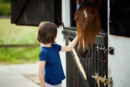 Little girl strokes a beautiful horse in the barn Standard-Bild - 149847407