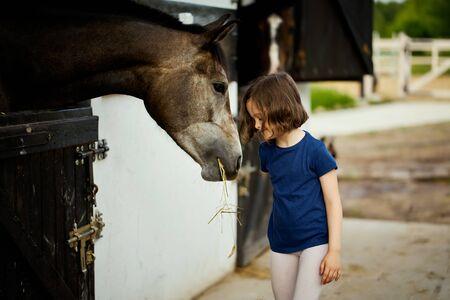 Little girl feeds a beautiful horse in the barn Standard-Bild - 149845240