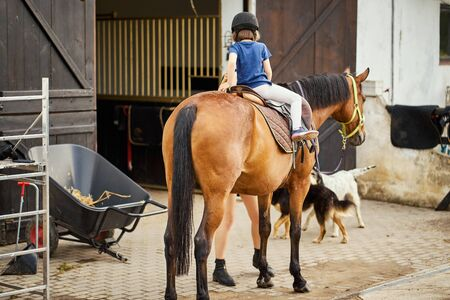 little girl sits on a horse in the stable Standard-Bild - 149844553