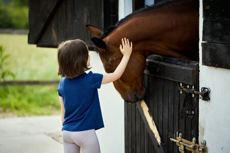 Little girl strokes a beautiful horse in the barn Standard-Bild - 149848300