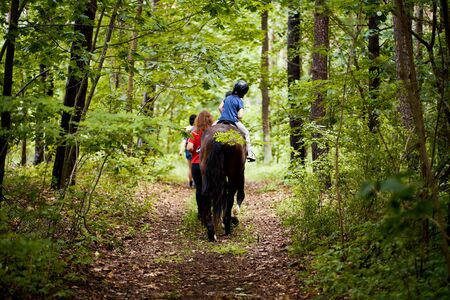 Little girl rides a beautiful horse on the road in the forest Standard-Bild - 149847726