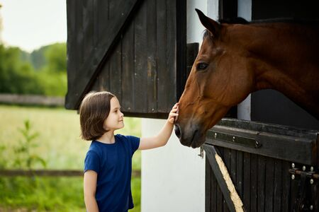 Little girl strokes a beautiful horse in the barn
