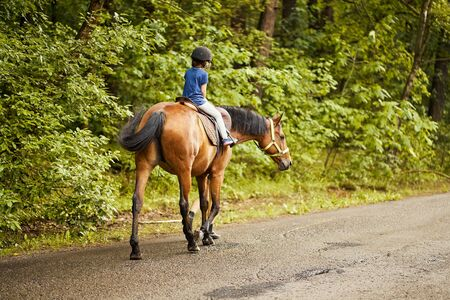 Little girl rides a beautiful horse on the road in the forest Standard-Bild