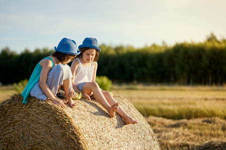 two charming girls are sitting on a roll of mown rye in a field