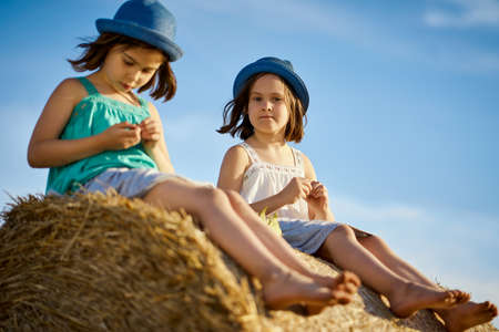 two charming girls are eating sunflower seeds on mown rye in the field