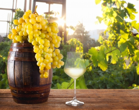 White wine with grapes and barrel on wood table photo