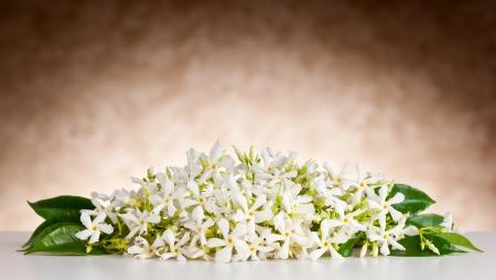 Flores de jazmín sobre mesa blanca y fondo beige