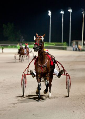 Training trotters race in hippodrome Stock Photo - 17302846