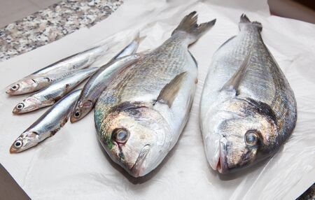Anchovies and sea bream for sale photo