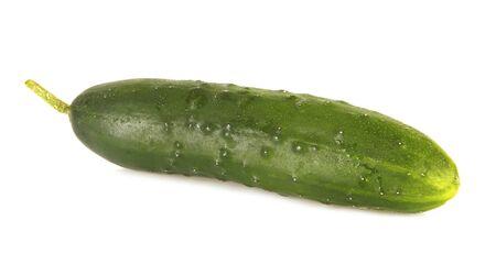 One isolated cucumber on white background Stock Photo - 19334460