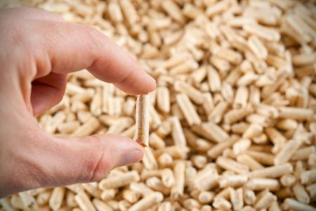 wood pellet: One wood pellet in hand on  pattern of wood pellets