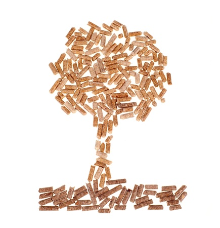 Tree of wood pellet on white background photo