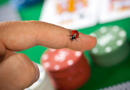 Ladybug charms on finger during a poker game photo