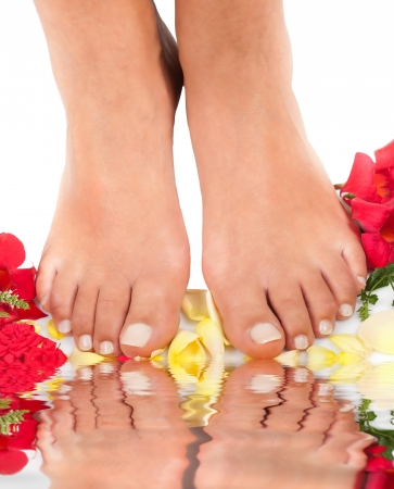 Feet with rose petals on white photo