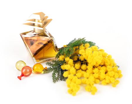Perfume of mimosa flowers on white background photo