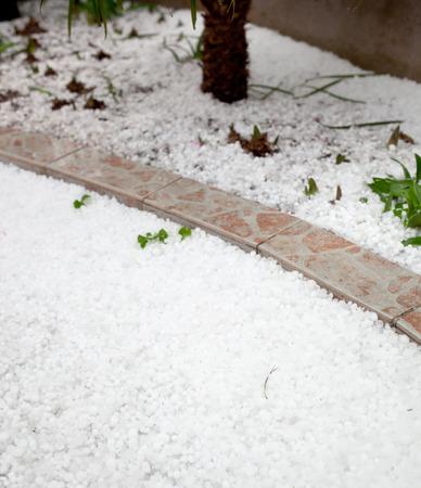 sleet: Settled hailstones after a sudden heavy storm in the garden