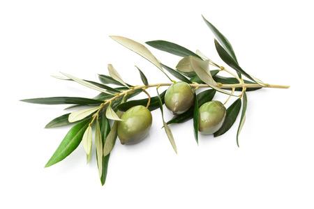 Olives sur une branche avec des feuilles isolées sur blanc Banque d'images