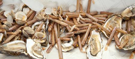 Lebensmittel, Schwertmuscheln mit Austern auf Eis. Standard-Bild
