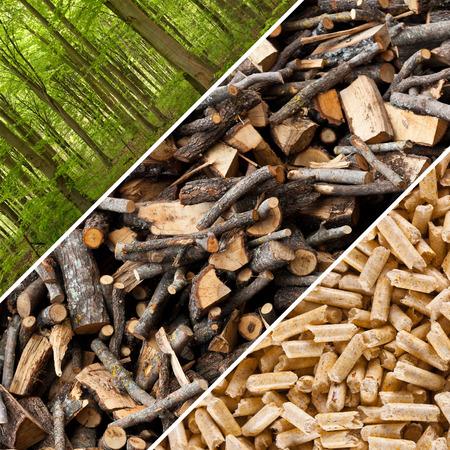 木質ペレットの工業生産の手順を実行します。