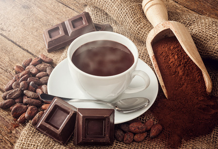 cocoa beans: Cup of hot chocolate with cocoa powder, cocoa beans and pieces of chocolate.