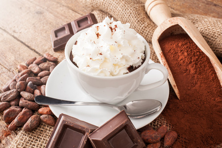 cocoa beans: Cup of hot chocolate with whipped cream, cocoa powder, cocoa beans and pieces of chocolate. Stock Photo