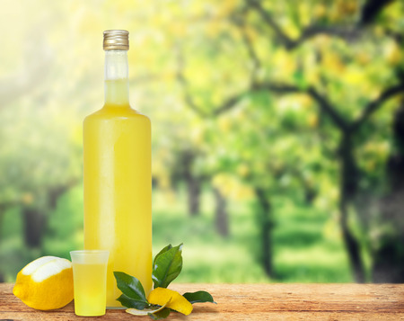 Italian alcoholic beverage, Limoncello on wooden table over lemon trees. Archivio Fotografico