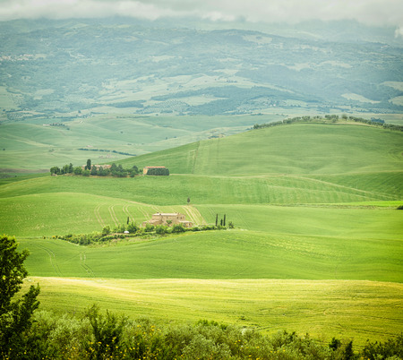 podere: Beautiful view of scenic Tuscany landscape in Val dOrcia, Italy