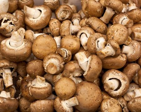 chelsea: Mushrooms background for sale at chelsea market