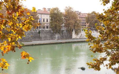 glimpse: Roman glimpse of the Tevere river with autumn leaves. Stock Photo
