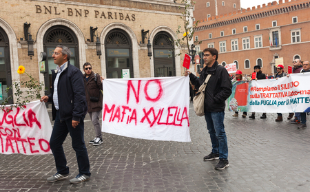 magistrate: ROME,ITALY - NOVEMBER 14, 2015: National demonstration in support of the magistrate Nino Di Matteo, event organized by the Movimento Agende Rosse and Scorta Civica.