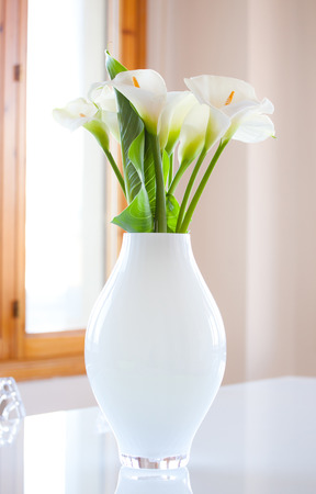 white nile: Lily of the Nile (Zantedeschia aethiopica) flowers in a white vase. Photography very bright.