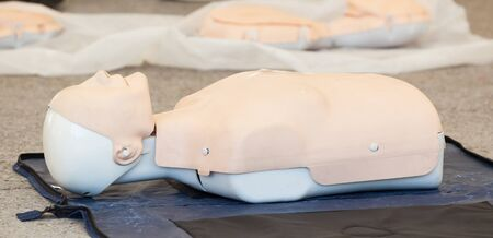 chest compression: Model of dummy used for CPR training. Stock Photo