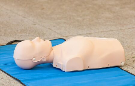 dummy: Model of dummy used for CPR training. Stock Photo