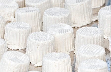 ricotta cheese: Many ricotta cheese on tray at a wedding buffet. Stock Photo