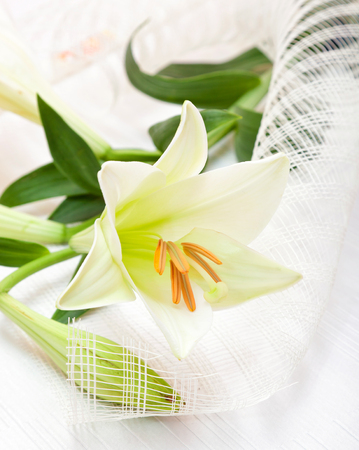 Beautiful white Easter lily flower bouquet, religious symbol of the first holy communion.