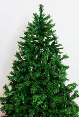 Close up of bare artificial christmas tree on white wall.