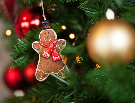 Gingerbread hanging on christmas tree with balls and lights. Stock Photo
