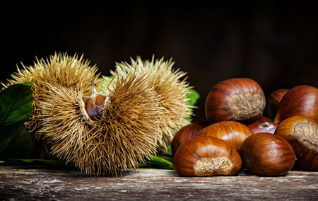 Chestnuts and chestnut bur on wooden table. Banco de Imagens - 111211587